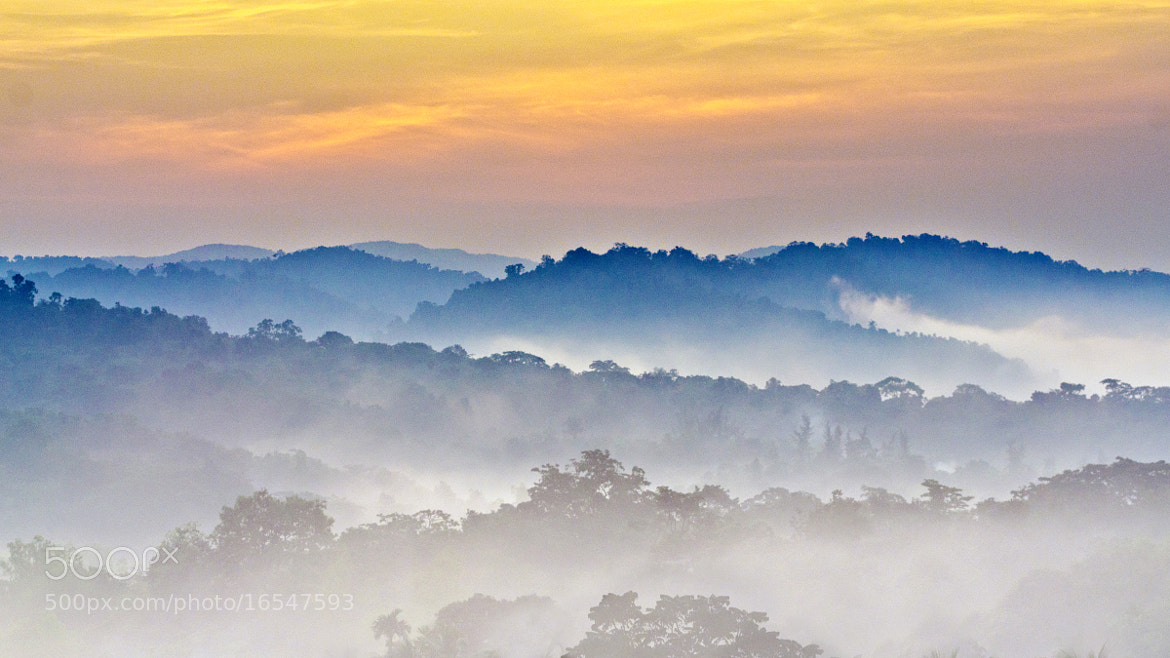 Photograph Morning Mist by Sudarshan Hp on 500px