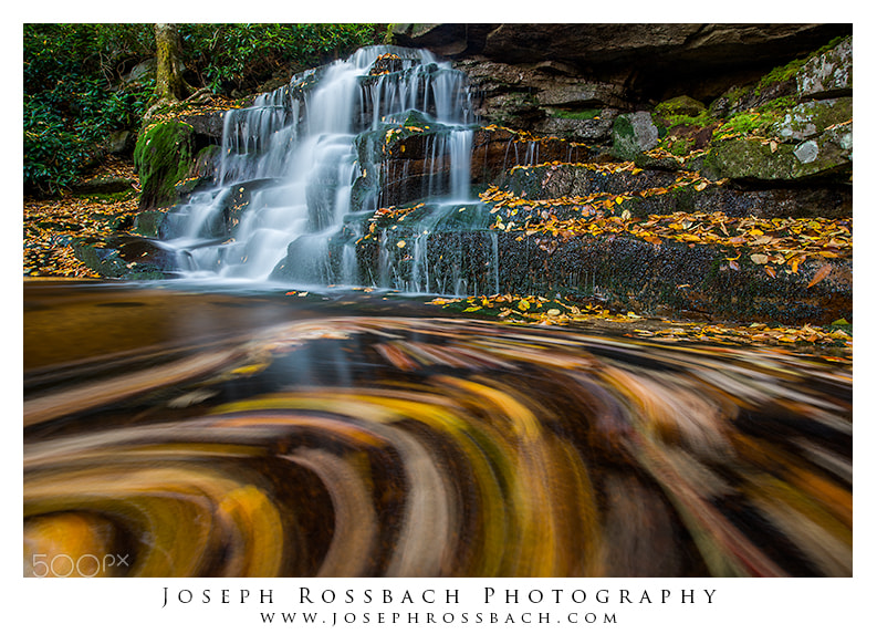 Photograph Swirls by Joseph Rossbach on 500px
