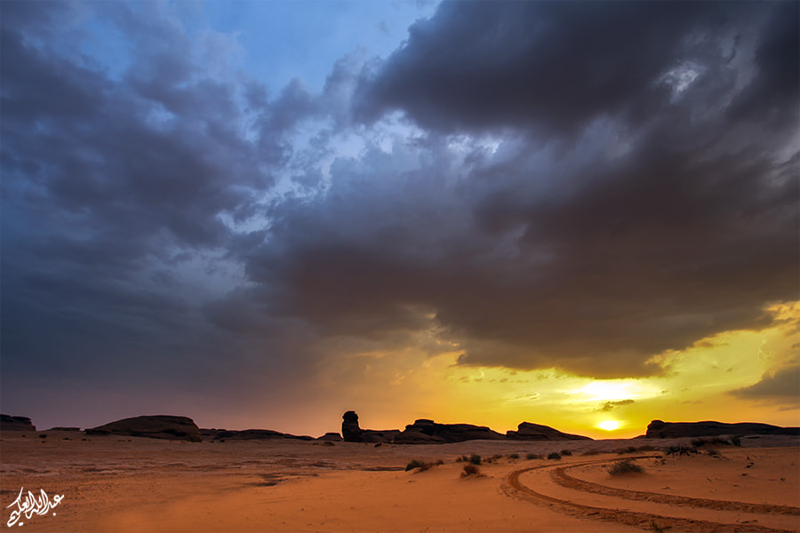 Photograph Warm day by Abdullah Al-Okime on 500px