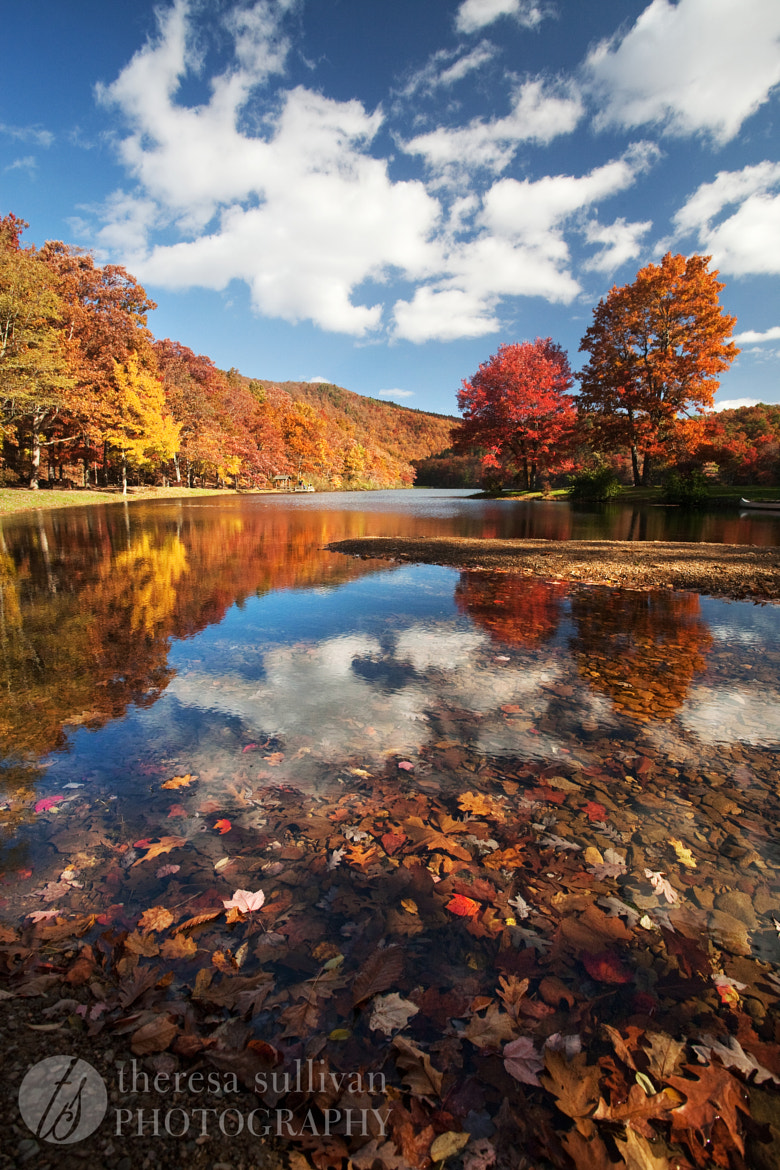 Photograph Fall @ Lake Sherando, Virginia by Theresa Sullivan on 500px
