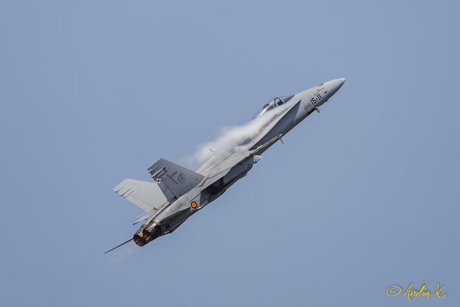 EF-18M Hornet