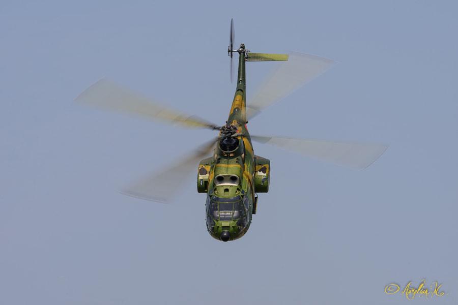IAR-330 Puma