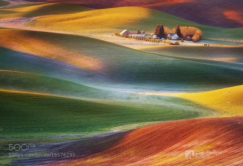 Photograph Frosty Morning Palouse by Chip Phillips on 500px
