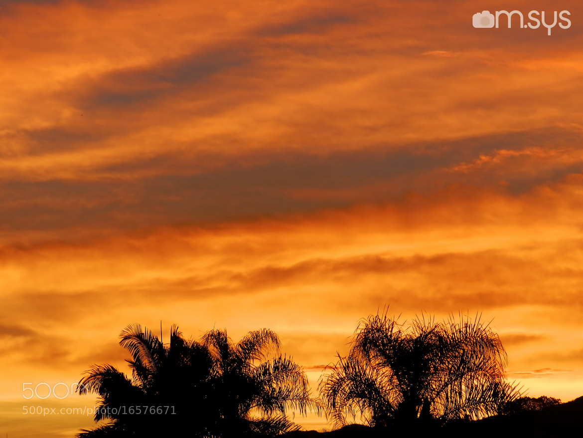 Photograph Orange Sky by Mauro Clemente on 500px