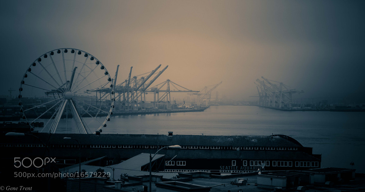 Photograph Foggy Morning by Gene Trent on 500px