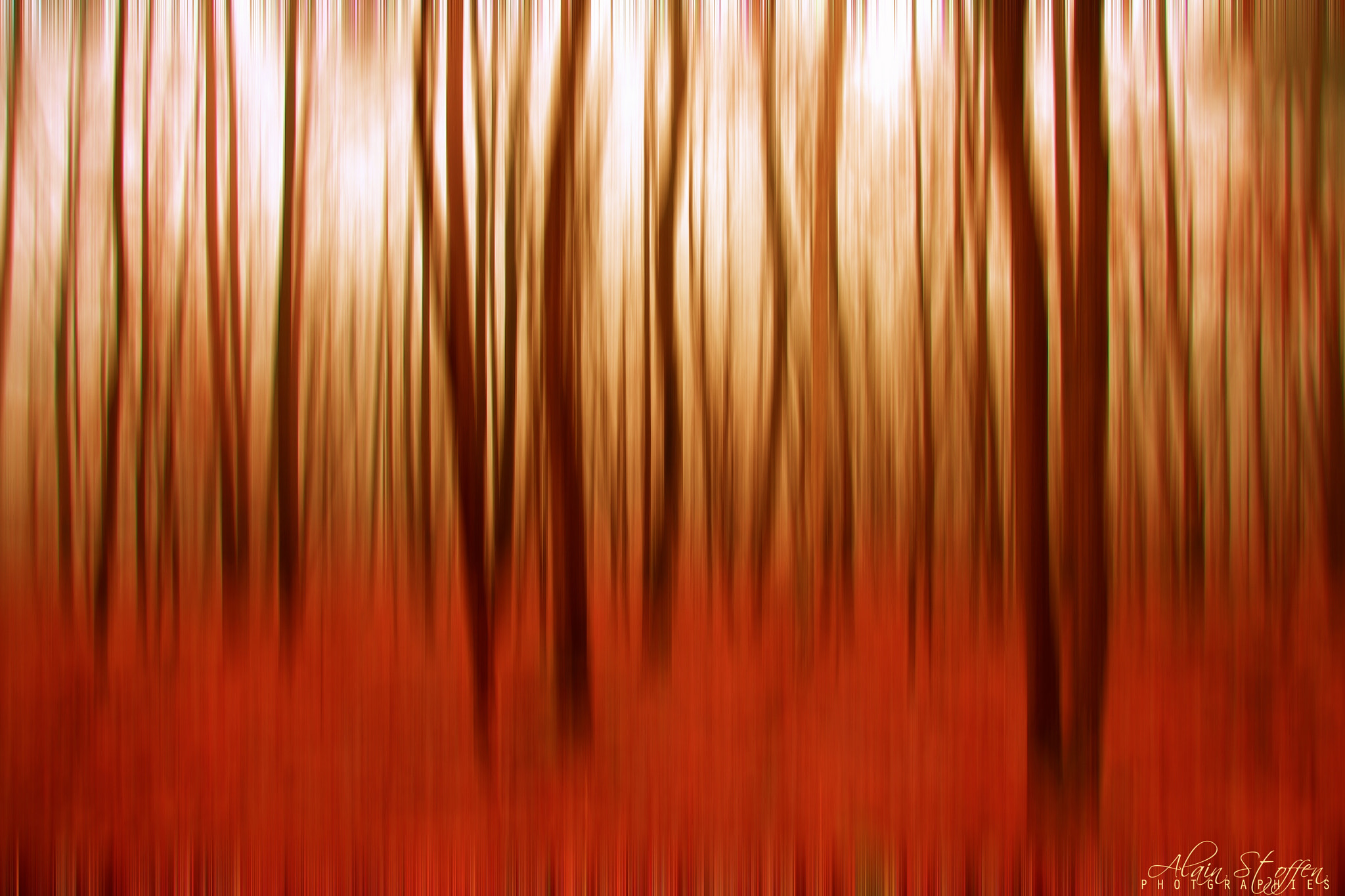 Photograph Autumn forest blur by Alain Stoffen on 500px