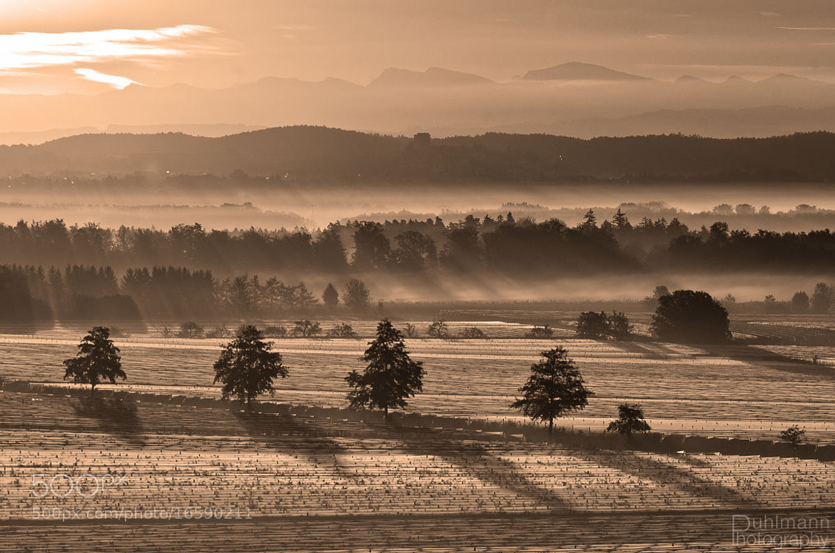 Photograph Misty Morning by Claus Puhlmann on 500px