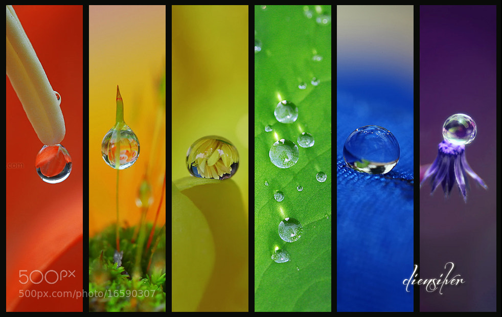 Photograph The rainbow drops by Diens Silver on 500px