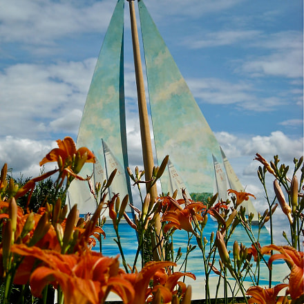 Day Lilly Sailing, Nikon COOLPIX L18