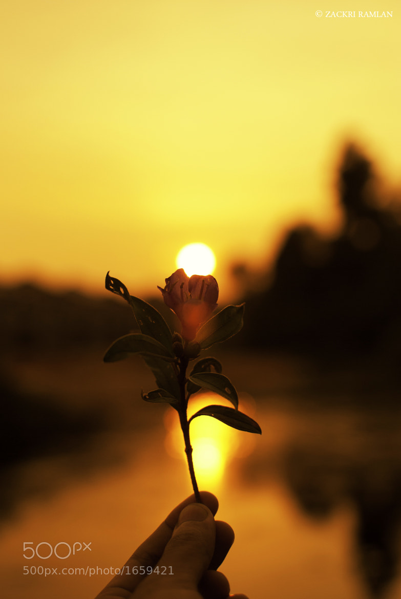 Photograph This is For You by Zackri Zim's on 500px