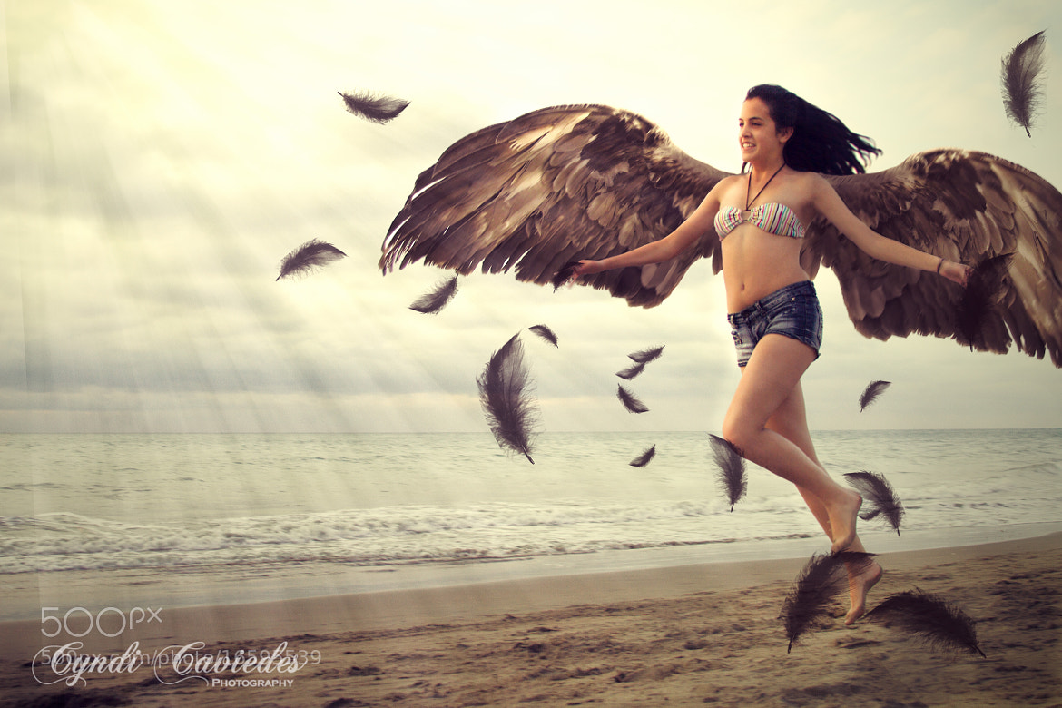 Photograph Fly with the wind by Cyndi Caviedes on 500px