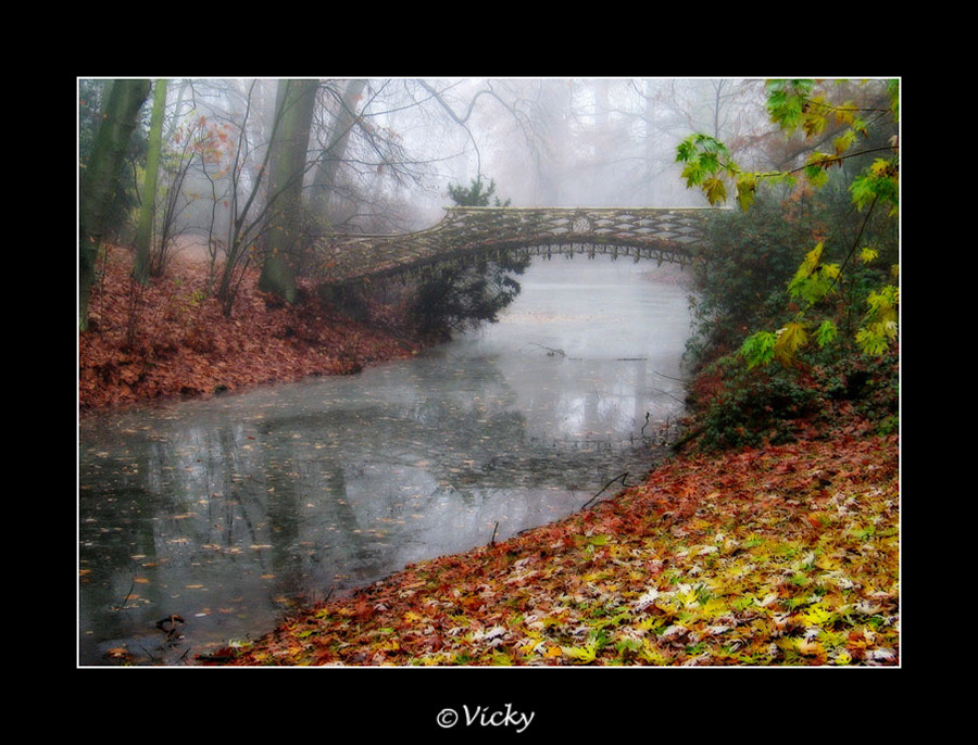 Photograph misty by Vicky Dens on 500px