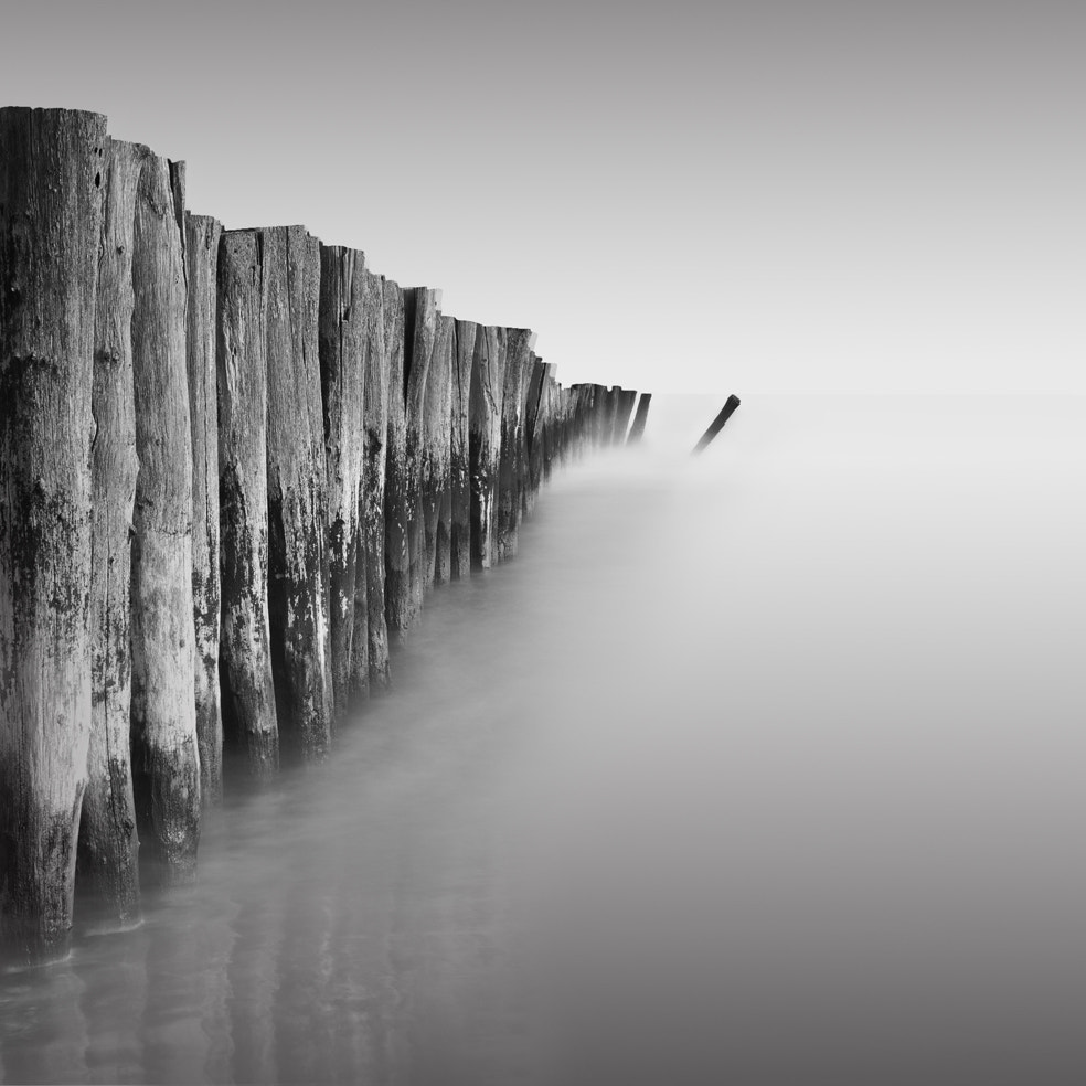 Photograph Domino by Julien Carcano on 500px