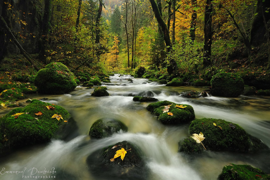 Photograph The song of water... by Emmanuel Dautriche on 500px