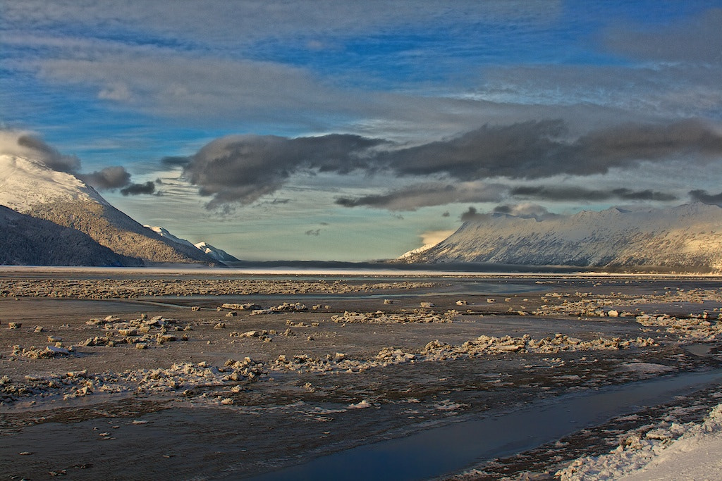 Photograph Winter Along The Turnagain by Buck Shreck on 500px