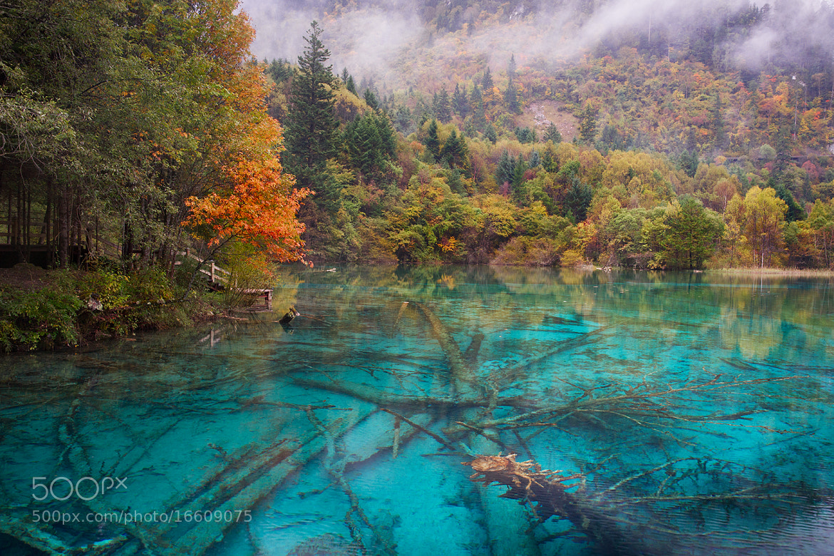 Photograph Jiuzhaigou Valley by Yuriy Bannov on 500px