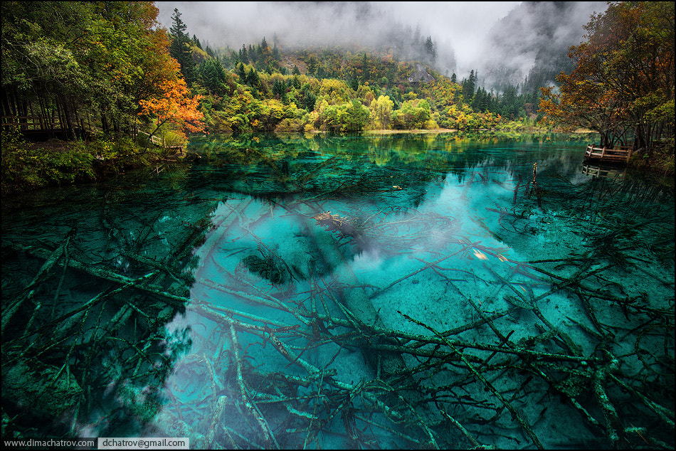 Photograph Colors of the mystical lake by Dima Chatrov on 500px