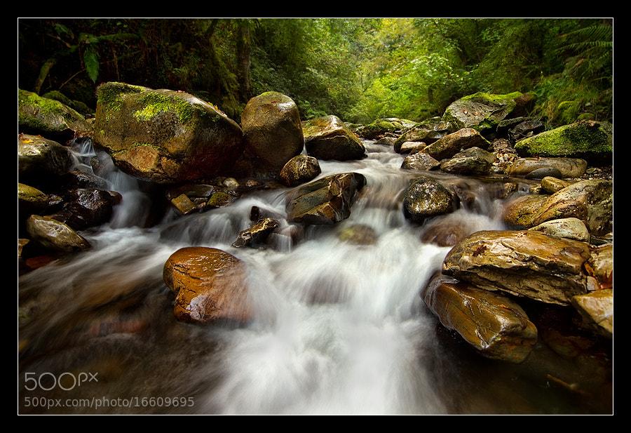 Photograph Entre aguas by Arturo Solis on 500px