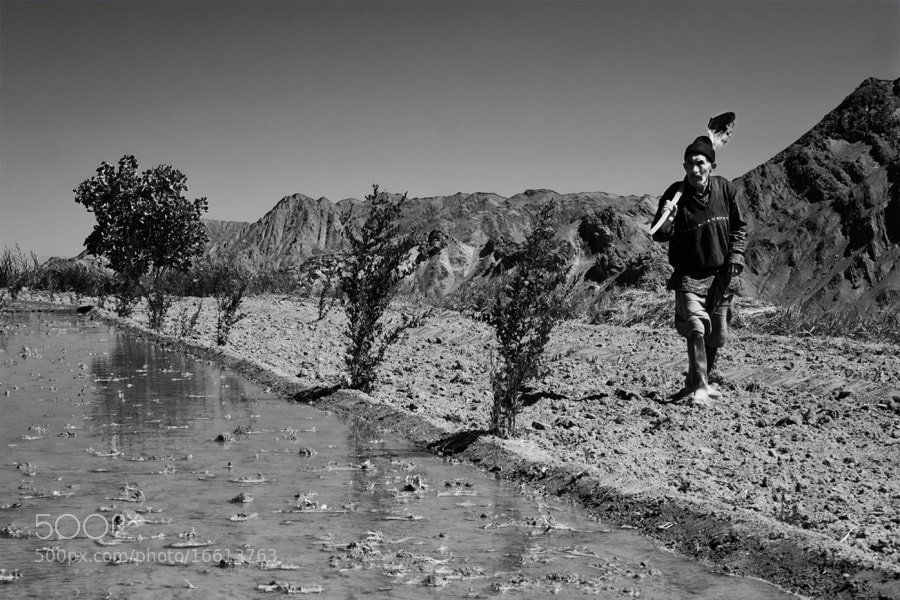 Photograph untitled  by MohammadReza Akhoondi on 500px
