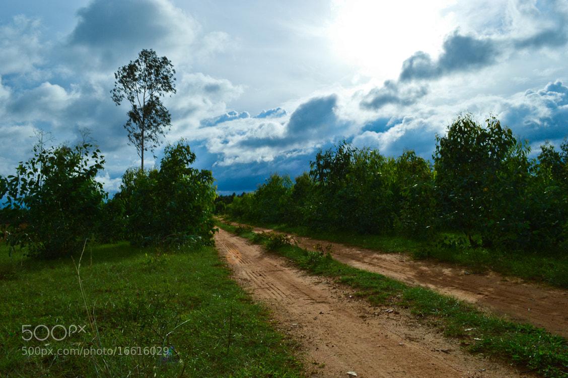 Photograph Village Pathway by Girinath G on 500px
