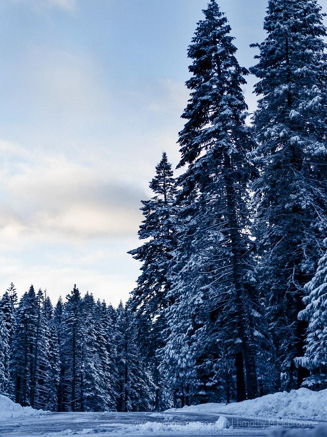 Winter in Lassen National Park