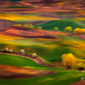 Sunset Glow, Palouse