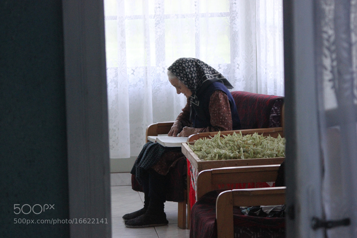 Photograph Grandmother Reading Bible by Dan Podina on 500px