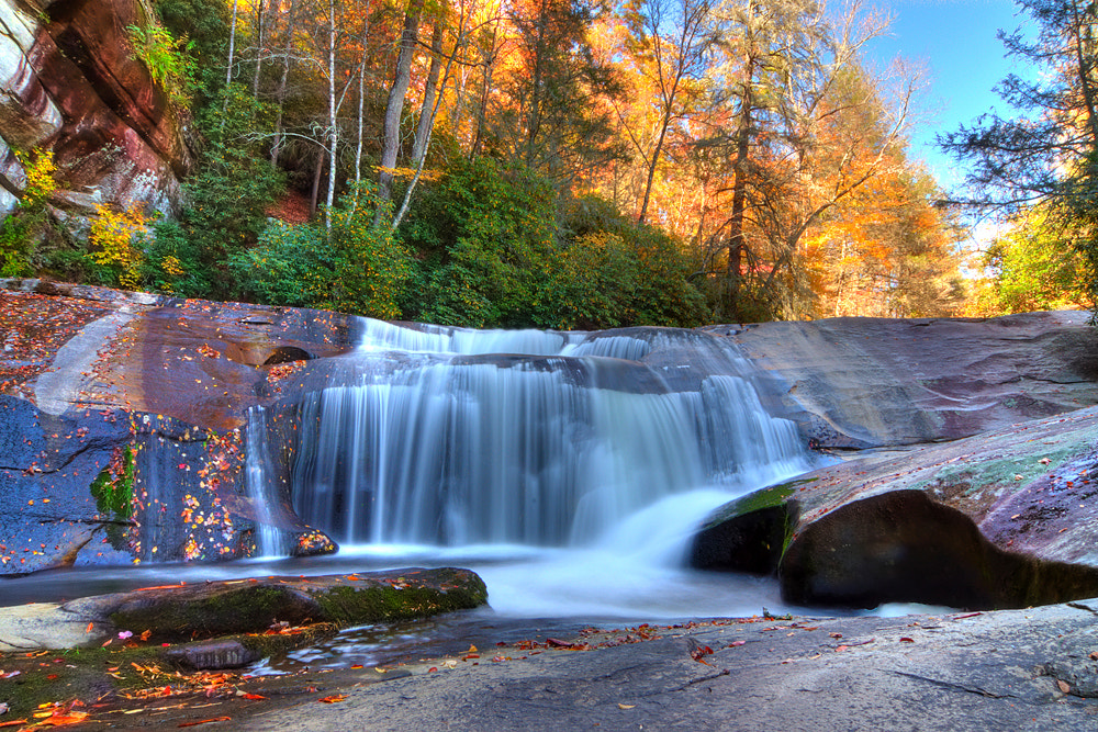 Photograph Cathedral Fall by Michael Erard on 500px