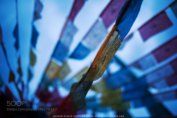Photograph Flags by Cyrus Young on 500px