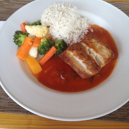 Food-497