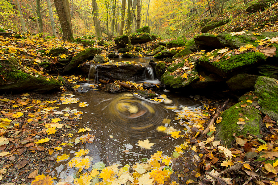 Photograph Autumn at its peak. by Marc Graf on 500px
