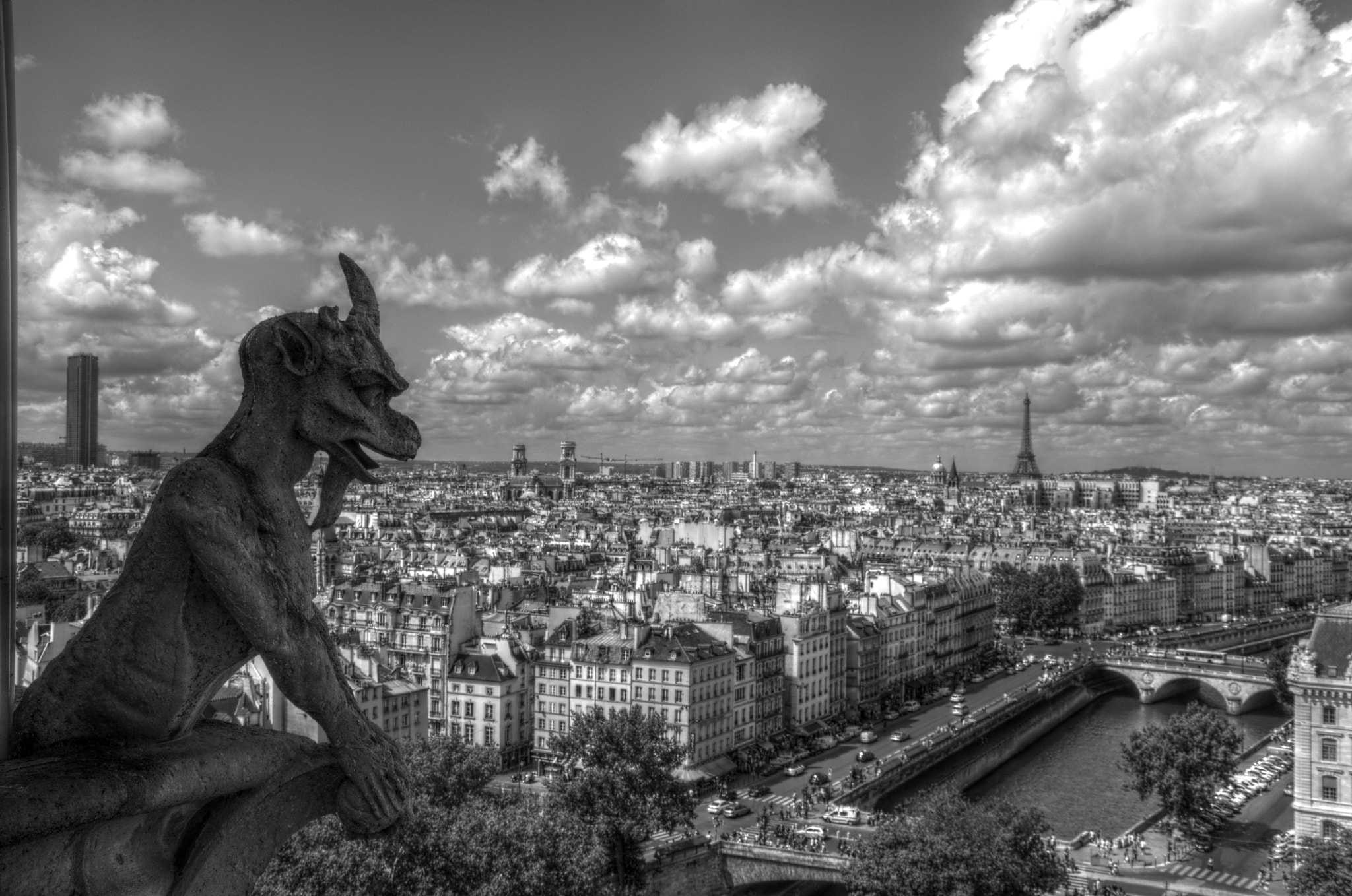 Photograph Chimera of Notre Dame by Lorenzo Salas-Morera on 500px