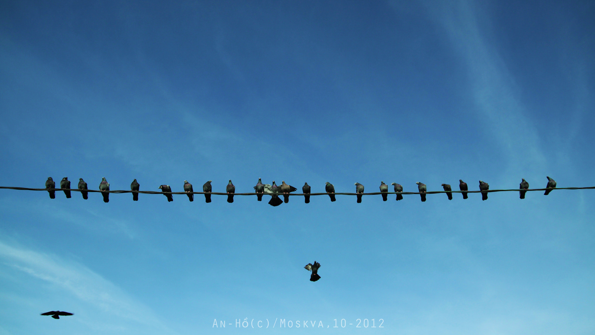 Photograph Get in the line! by Soi Rukami on 500px