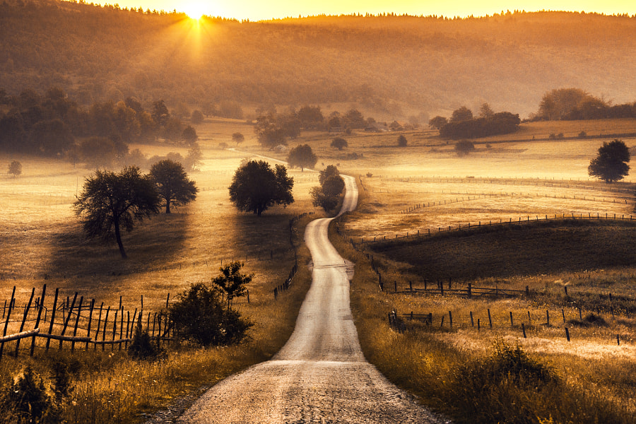 Golden Valley by Adnan Bubalo on 500px.com