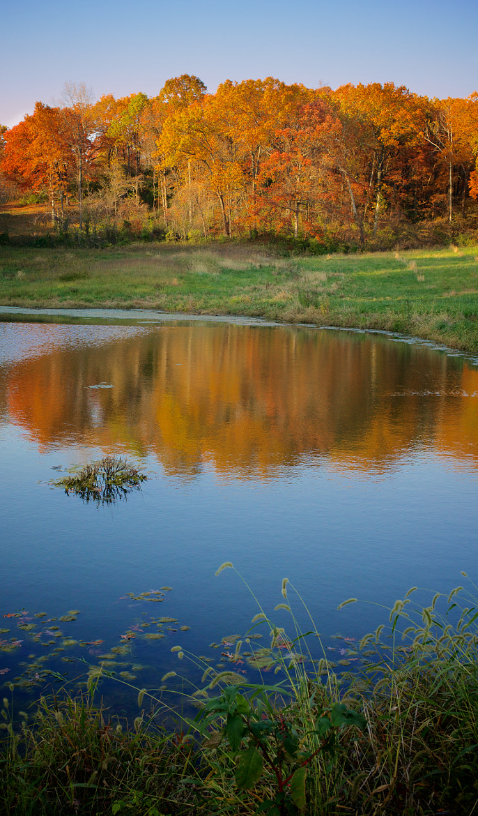 Photograph fall 2012 by mitch aunger on 500px