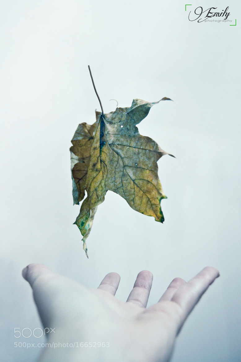 Photograph Fallin' by Emilie Raluca on 500px