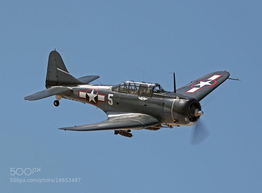 World War Two Douglas SBD Dauntless dive bomber.