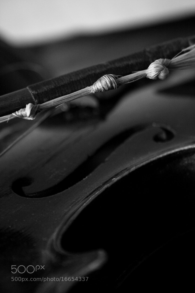 Photograph Grandpa's Violin 1 by Melanie MacDonald on 500px