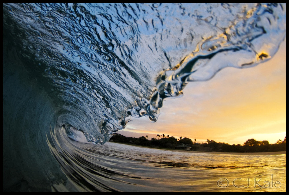 Photograph Hapuna Gold by Cj Kale on 500px
