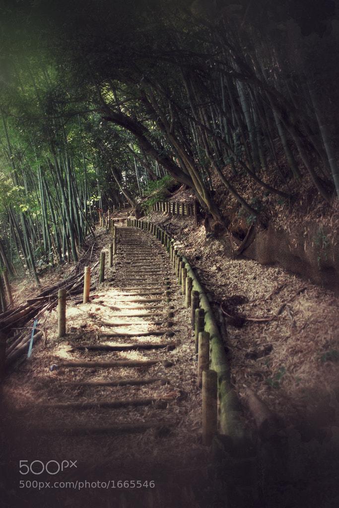 Photograph Mount Takao by E Devin Vander Meulen II on 500px