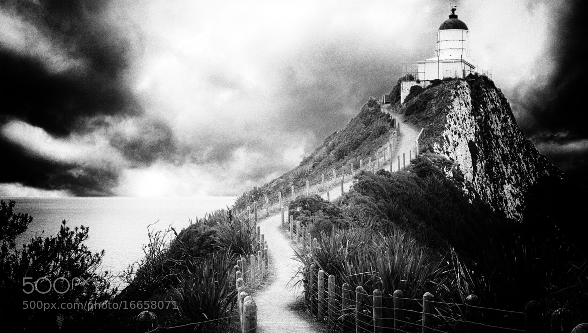 Photograph Nugget Point 2 by Margaret Morgan on 500px