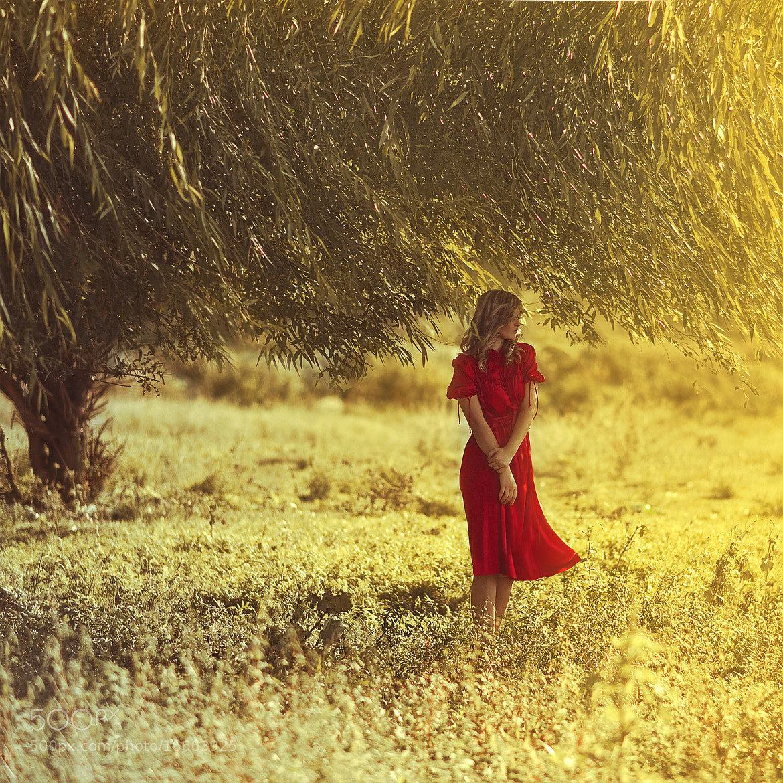 Photograph Untitled by Svitlana Miku on 500px