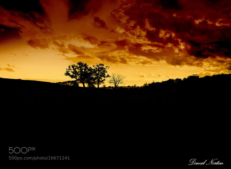 Photograph Autumn Sunburst by Donal Norton on 500px