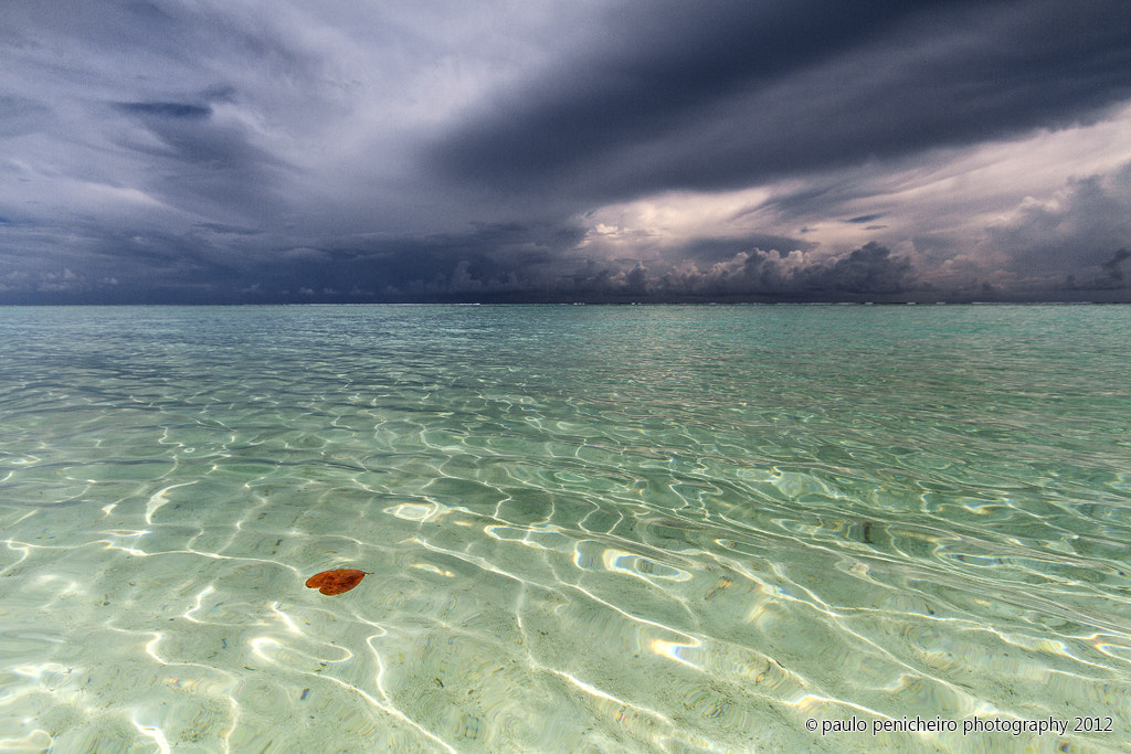 Photograph Love is in The Water by Paulo Penicheiro on 500px
