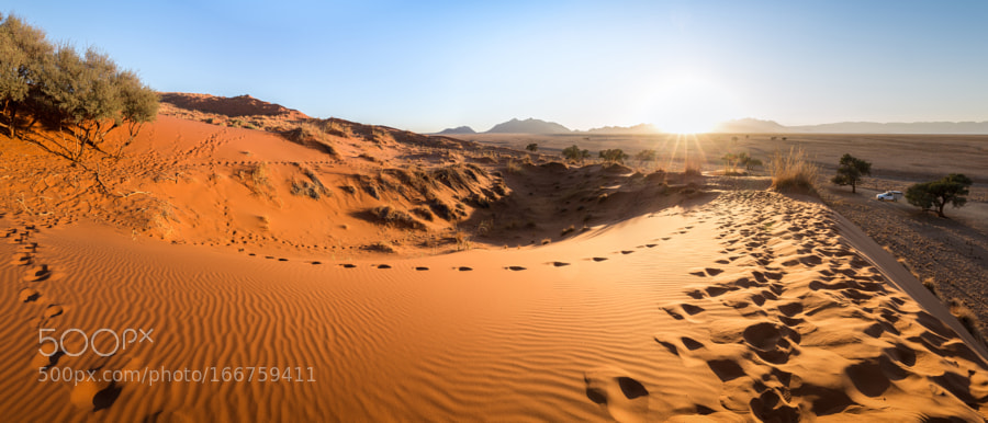Elim Dune at sunrise