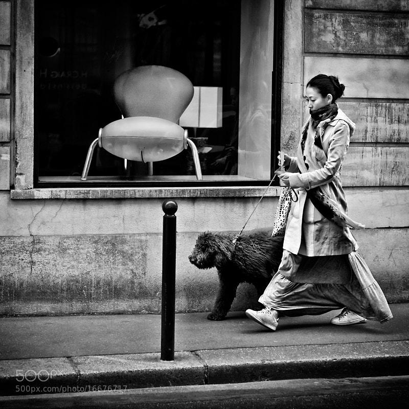 Photograph Le fauteuil, le chien et le poteau by patrick plazzi on 500px