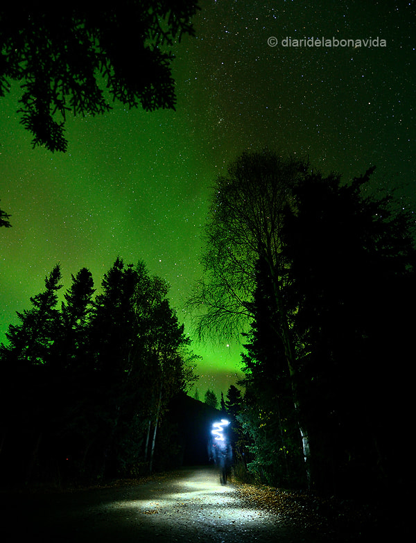 Photograph walking under the Northern Lights by Manel Puente on 500px
