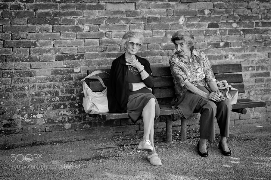 Two women gossip on a park bench