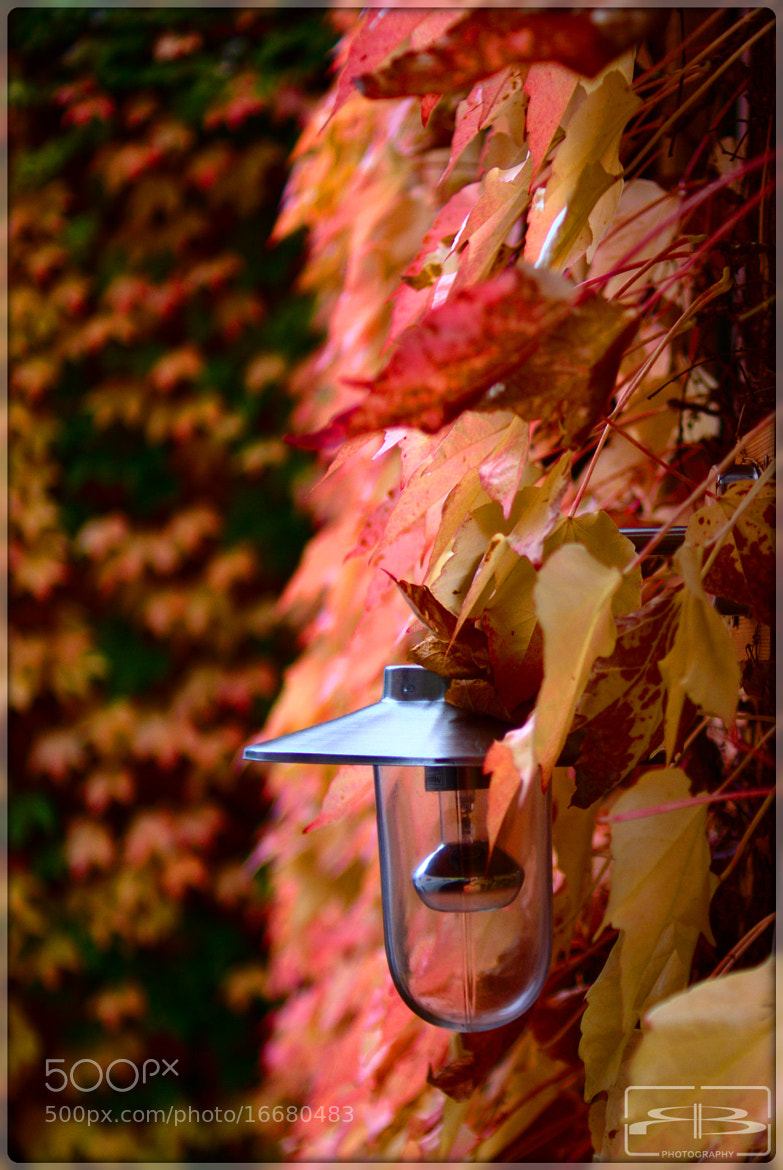 Photograph Lamp by Rene BERNHARD on 500px