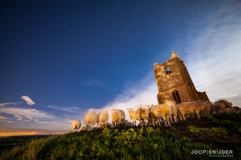 Photograph Counting Sheep by Joop Snijder on 500px